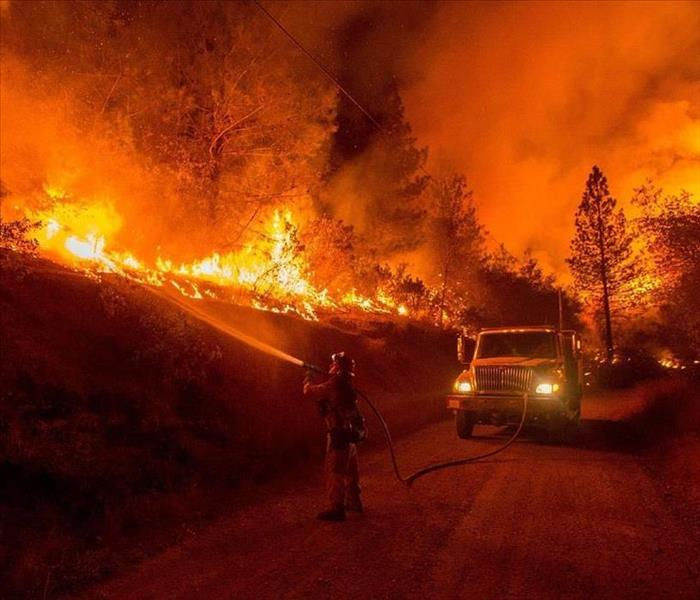 Fire Damage Causes of Wildfires