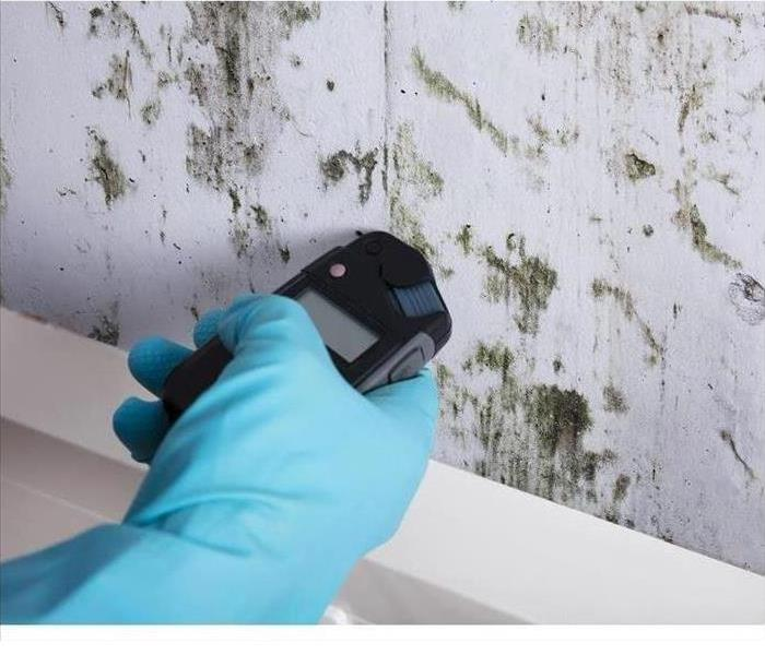 Mold on the wall and a gloved hand with a device to test the mold