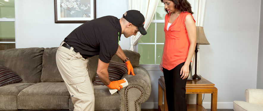 Kissimmee, FL carpet upholstery cleaning