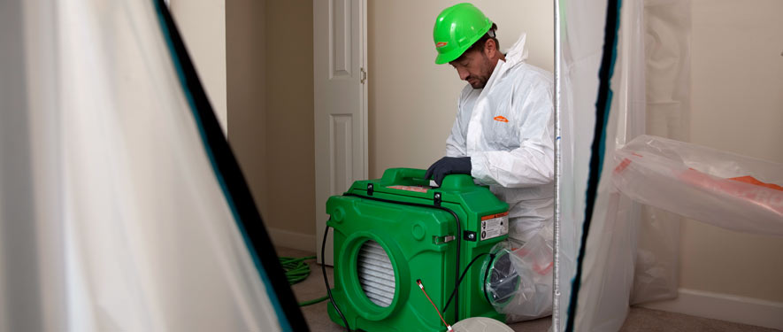 Kissimmee, FL mold cleanup